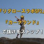 『リグロースラボSP2』+『カークランド』で抜け毛ストップ!